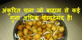 sprouted chana benefits in hindi